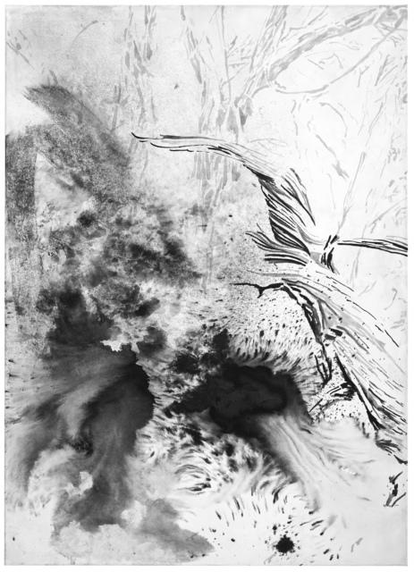 """Petra Polli, N 46°32'41,6""""  O 11°34'46,5"""", 2016,"""