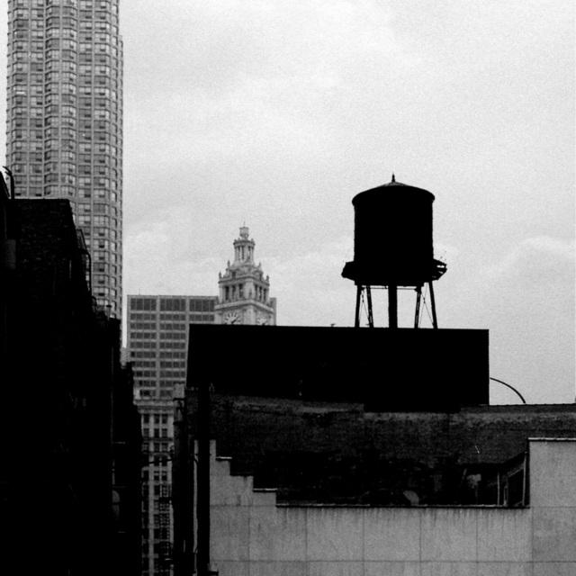 Boris von Brauchitsch, New York, 1993