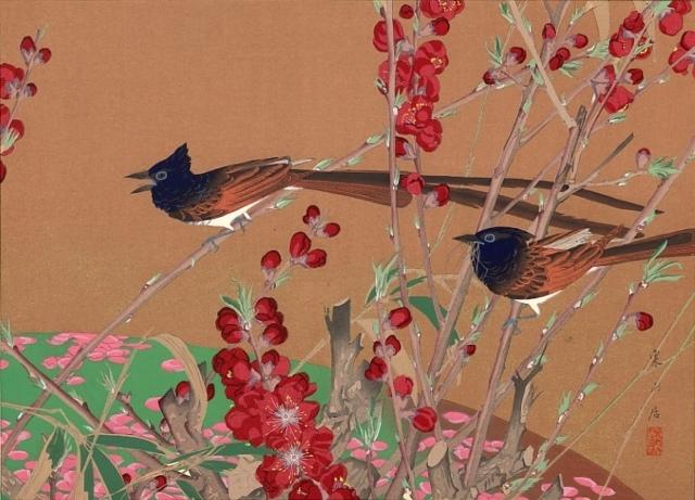 Rakusan Tsuchiya, jap. Paradies-Fliegenfänger und rote Pflaume, 1931, Farbholzschnitt