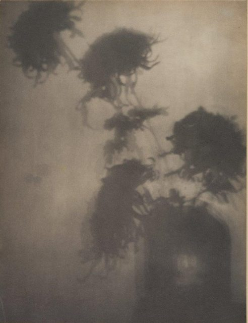 Adolphe de Meyer, The Shadows on the Wall, um 1906, Platindruck (Reprint auf Hahnemühle),