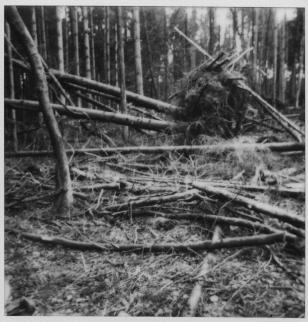 Jette Hampe, Auflösung III/289, Polaroid, 2019